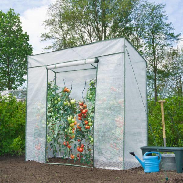 Nature Tomatengewächshaus 198x78x200 cm