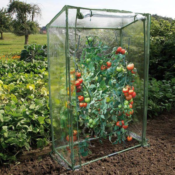 Nature Tomatengewächshaus 100×50×150 cm