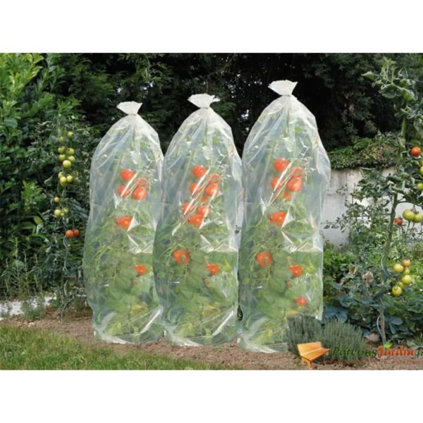 Nature Tomaten-Reifehaube 1500×50 cm